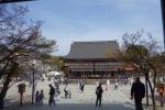 八坂神社・本殿06