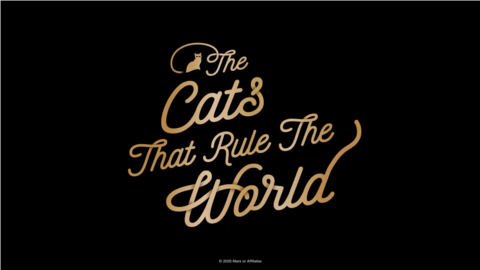 THE CATS THAT RULE THE WORLD | SHEBA®