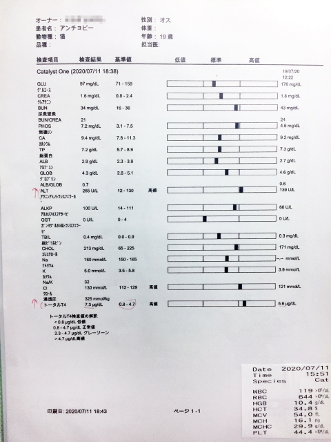ancho_bloodtest_071920