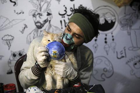 cat-palestine_2020-03-28_09-32-24