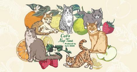 catsnaptime2021_CatsNaptime-PC-Slider
