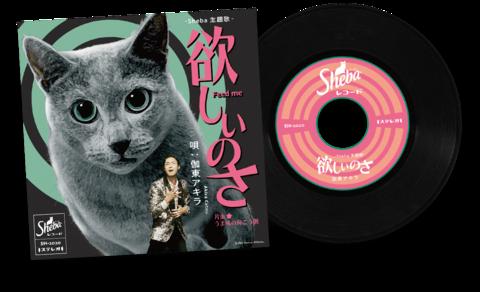 hoshiinosa_music-record