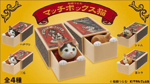 matchboxcat_all