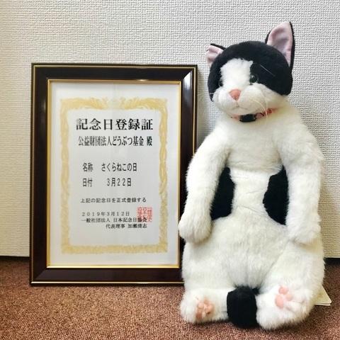sakuranekonohi_032220_sub3