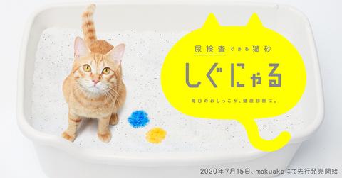 shigunyaru_main