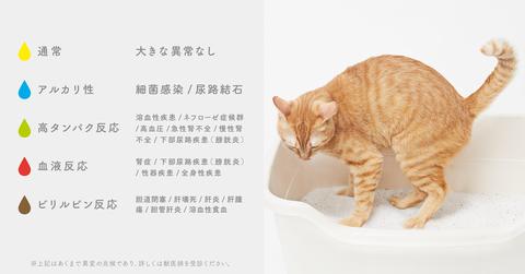 shigunyaru_sub5