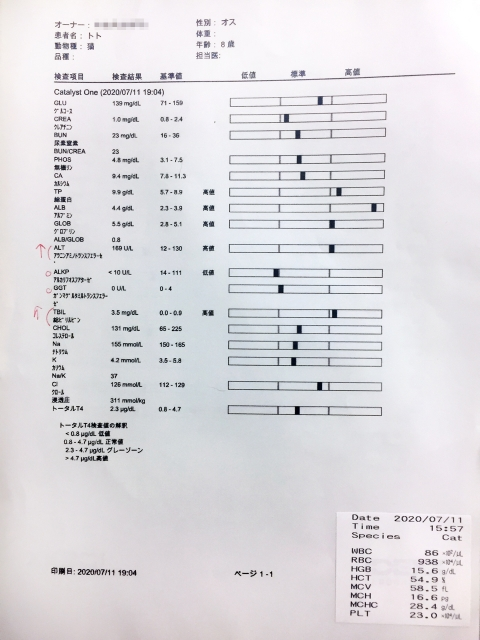 toto_bloodtest_071920
