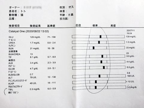toto_bloodtest_082120
