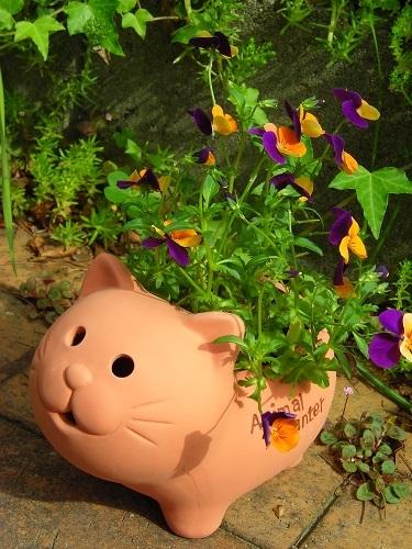 ねこ植木鉢