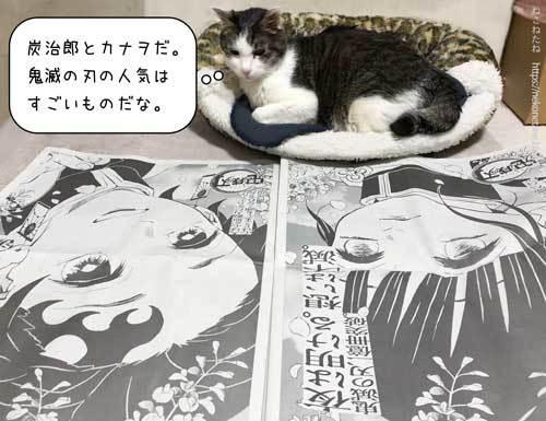 炭治郎とカナヲだ。鬼滅の刃の人気はすごいものだな。