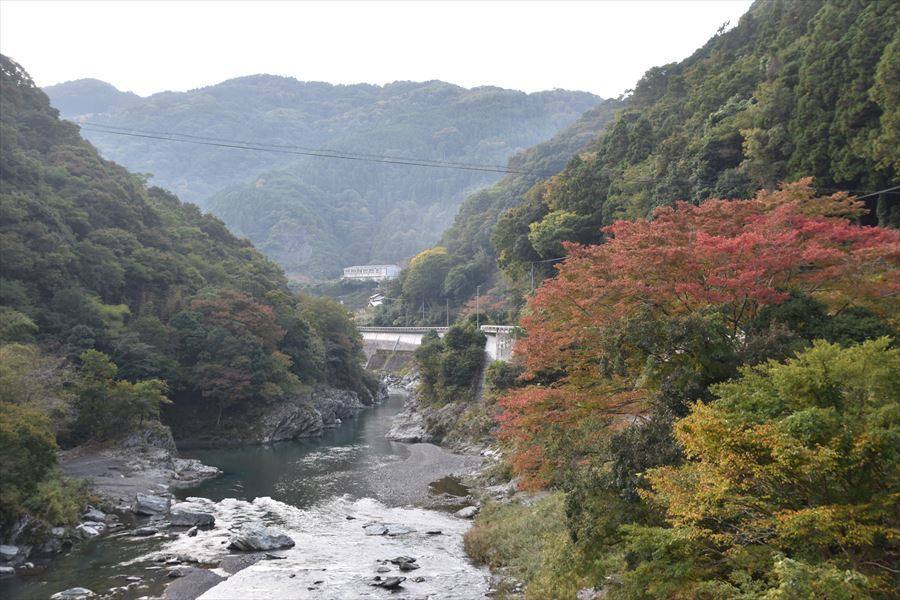 穴吹川の紅葉1