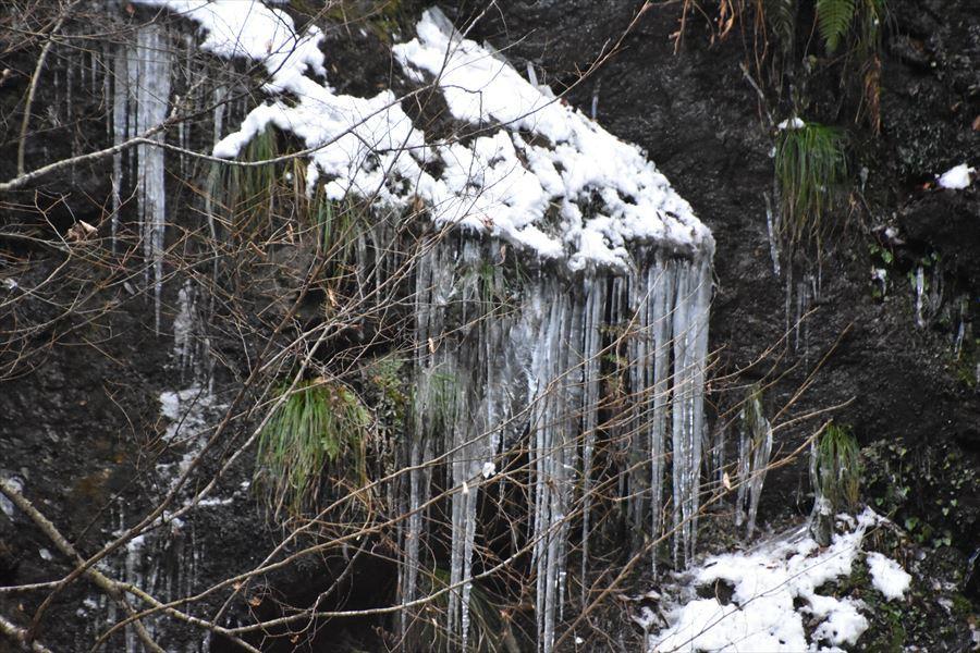 閑定の滝4