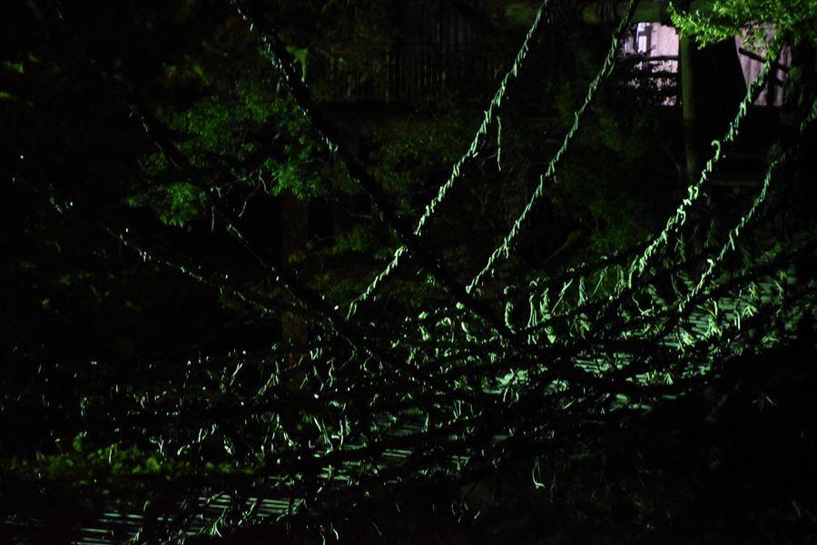 夜のかずら橋2