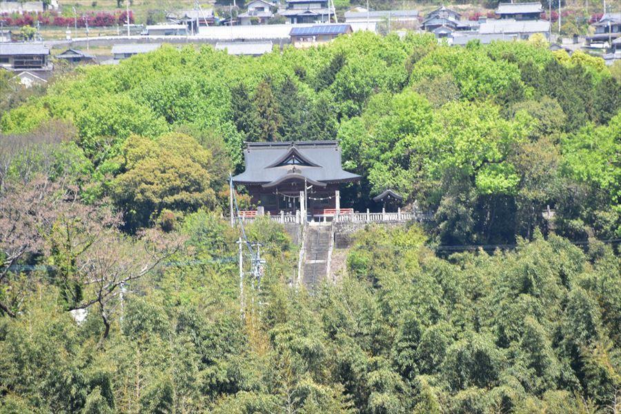 野村八幡5