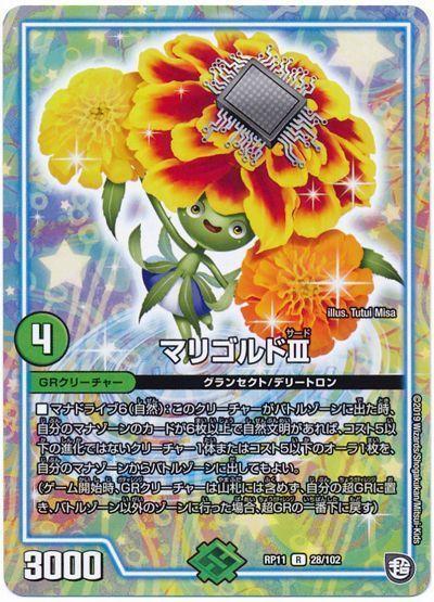 card100172004_1.jpg