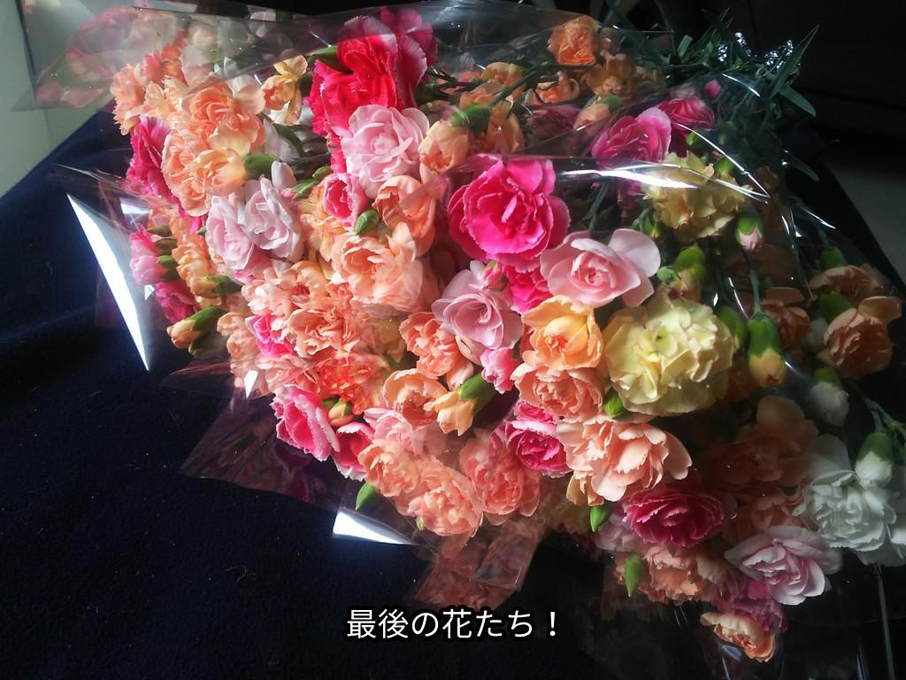 最後の花たち!
