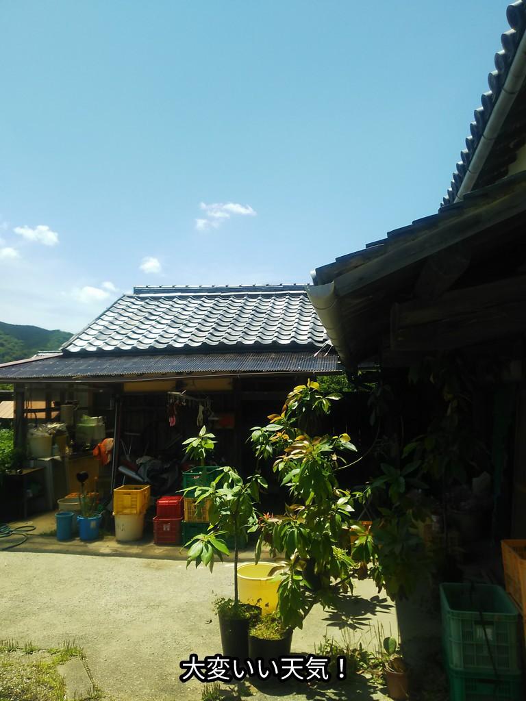 大変いい天気!