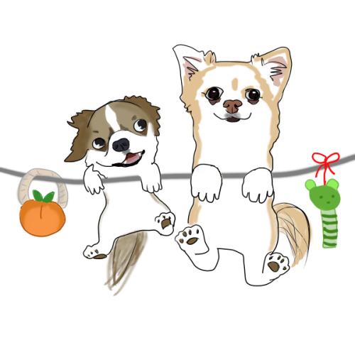 babaちゃまさん作 柚子&杏子