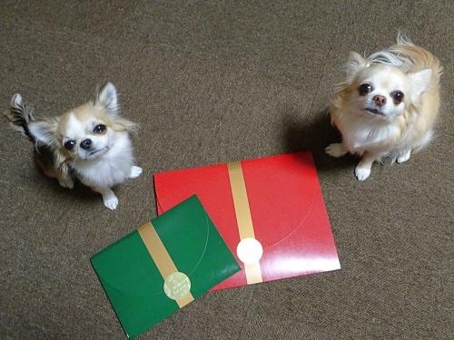 レイままさんからプレゼント♪ 柚子 杏子