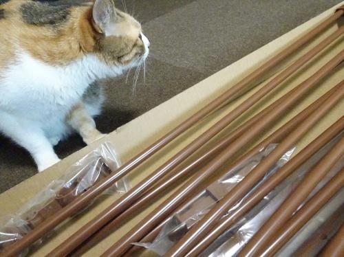 猫脱走防止フェンス 蜜柑