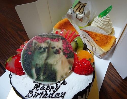 誕生日ケーキです♪