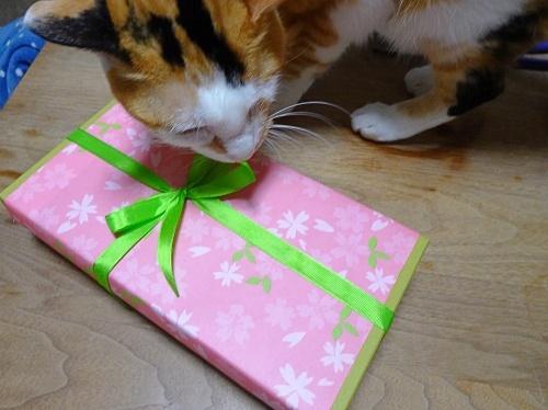 オードリーさんからプレゼント♪ あられ