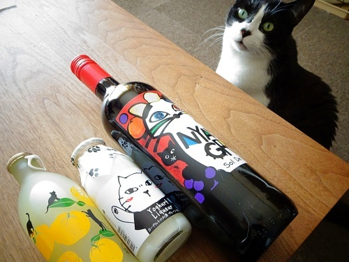 カルディ 猫の日