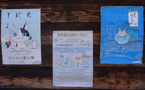 香嵐渓で発見TNRポスター