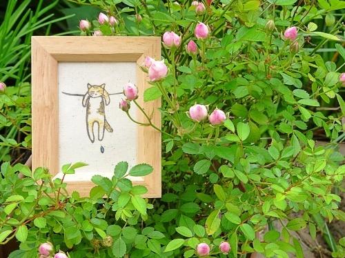 我が家の庭にて ししゅうねこさんの干され猫の蜜柑