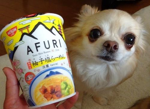 カップ麺 柚子