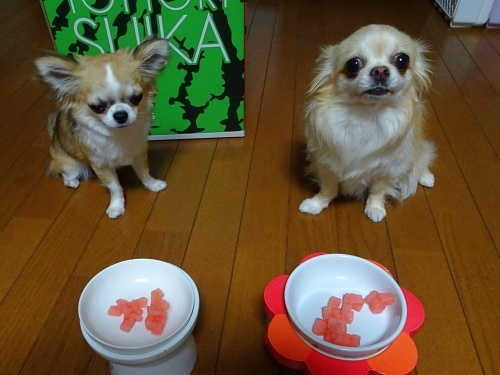 レイままさんからプレゼント 柚子 杏子