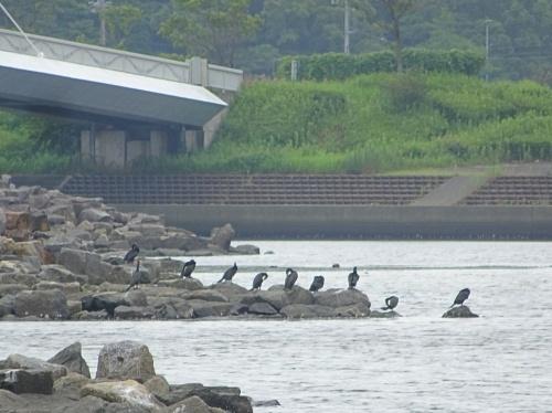 三河臨海緑地公園「日本列島」