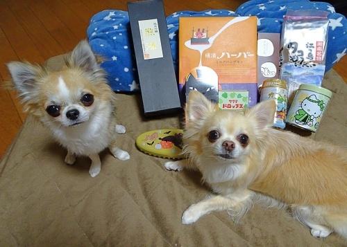 Gaviちゃんちからプレゼント♪ 柚子 杏子