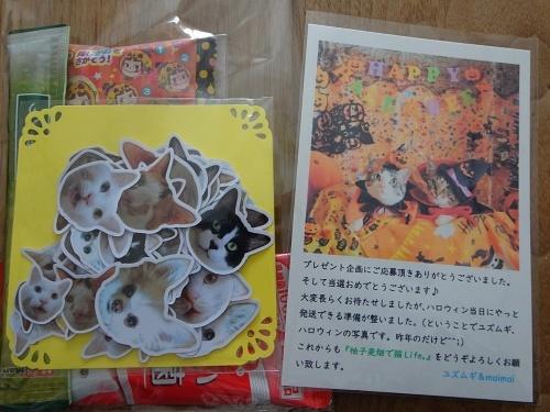 maimaiさんのプレゼント企画当選♪