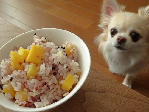 芋ご飯 柚子