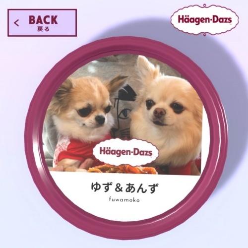 ハーゲンダッツ 柚子 杏子
