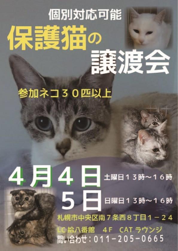 0404譲渡会_R