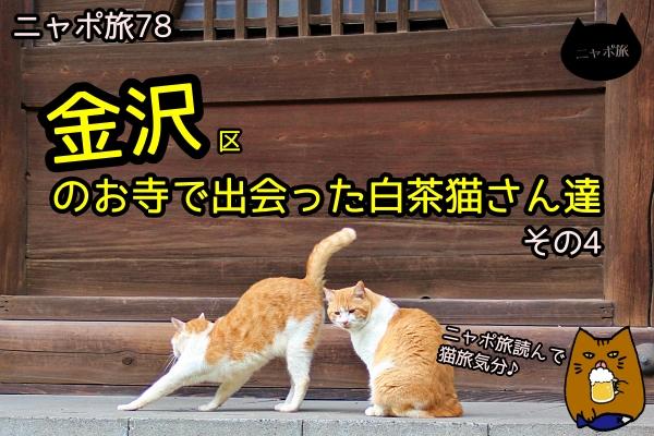 ニャポ旅78 金沢 その4
