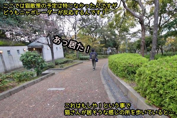 ニャポ旅74 大阪 その4