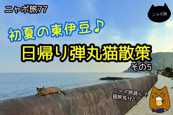 ニャポ旅77 東伊豆 その5