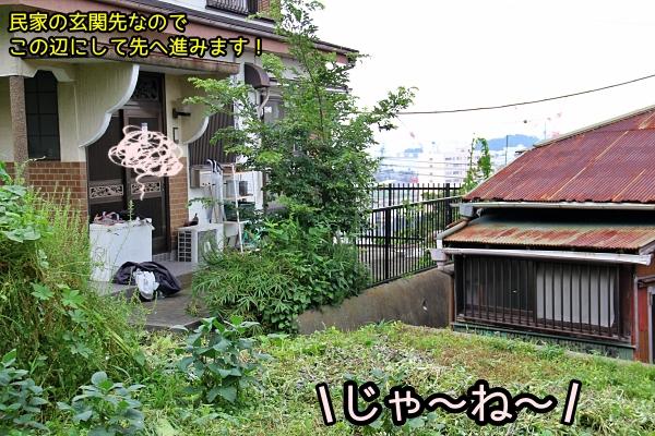 ニャポ旅81 横須賀 その3