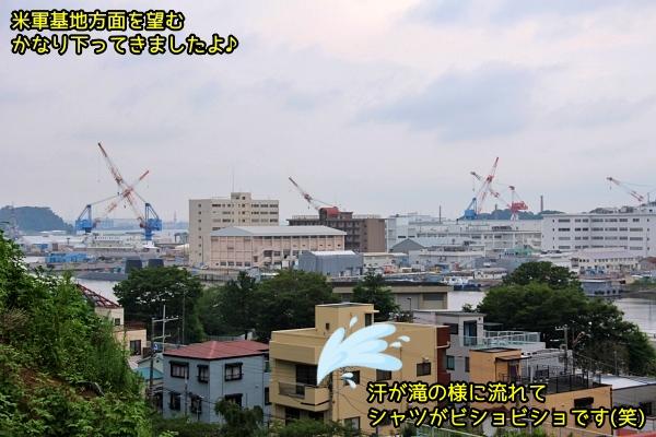 ニャポ旅81 横須賀 その5