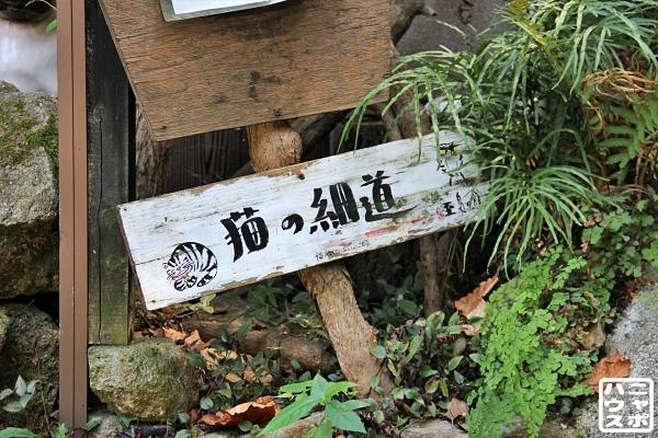 ニャポ旅83 尾道 その13