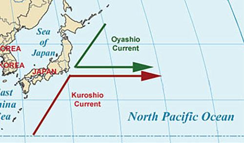 日本周辺で熱帯・亜熱帯性魚類の分布が北上