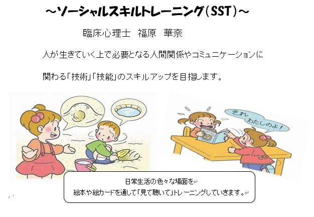 SST1.jpg