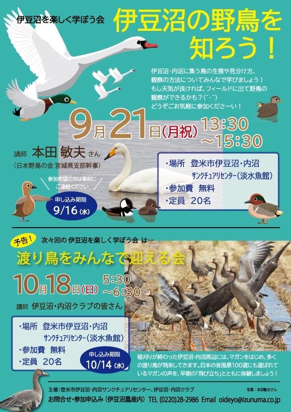 20200903-伊豆沼を楽しく学ぼう会-伊豆沼の鳥を知ろう!