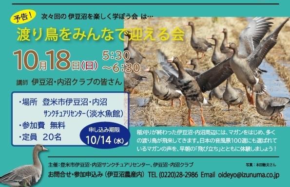 20200903-伊豆沼を楽しく学ぼう会-伊豆沼の鳥を知ろう!s