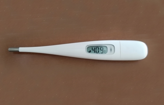 Thermometer87767.jpg