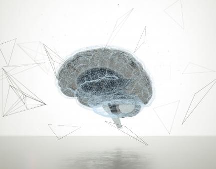 brain538735.jpg