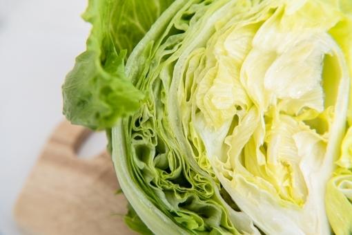 lettuce12.jpg